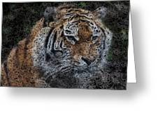 Majestic Bengal Tiger Greeting Card