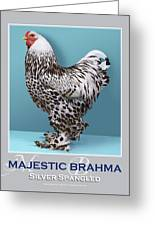 Majestic Brahma Silver Spangled Greeting Card