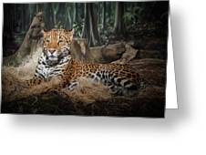 Majestic Leopard Greeting Card
