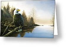 Majestic Light - Eagle Greeting Card