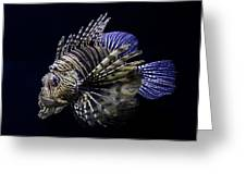 Majestic Lionfish Greeting Card