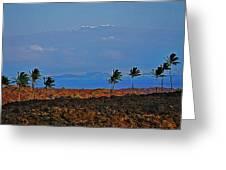 Majestic Mauna Kea Greeting Card by Bette Phelan