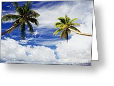 Majuro Atoll, Two Coconut Trees Lean Over Greeting Card