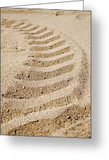 Making Tracks Greeting Card