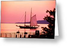 Malabar X Sailboat At Sunset Greeting Card