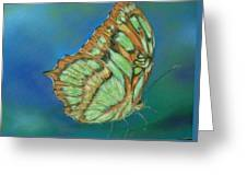 Malachite Greeting Card