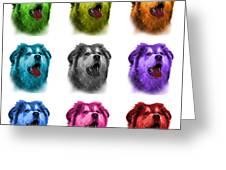 Malamute Dog Art - 6536 - Wb - M Greeting Card