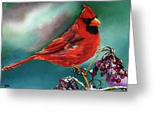 Male Cardinal And Snowy Cherries Greeting Card