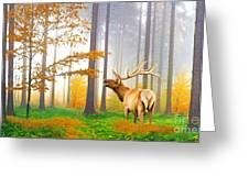 Male Elk Bugling Greeting Card