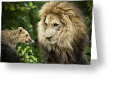 Male Lion And Cub Greeting Card