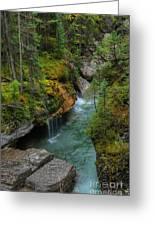 Maligne Canyon Falls Jasper National Park Greeting Card