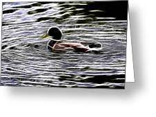 Mallard Duck - Fractal Greeting Card