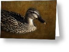Mallard Matriarch Greeting Card