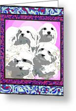 Maltese Group Greeting Card