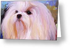 Maltese Portrait - Square Greeting Card
