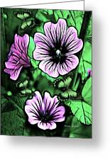 Malva Flowers Greeting Card