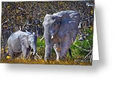 Mama And Baby Elephant Greeting Card