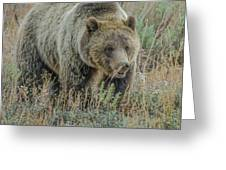 Mama Grizzly Blondie Greeting Card