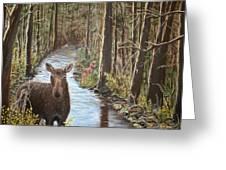 Mama Moose And Calf Greeting Card