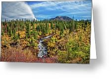 Mammoth Lakes Autumn Falls Greeting Card
