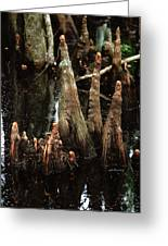 Man Of The Swamp Greeting Card