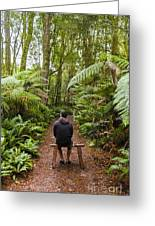 Man Relaxing In Strahan Rainforest Retreat Greeting Card