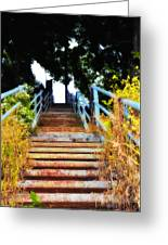Manayunk Steps Greeting Card