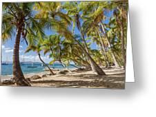 Manchioneel Bay, Cooper Island Greeting Card