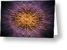 Mandala 171115-3253-2 Greeting Card