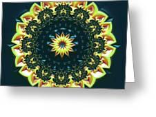 Mandala 467567 Greeting Card