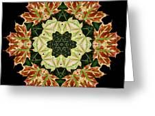 Mandala Autumn Star Greeting Card