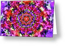 Mandala Floral Red Purple Greeting Card
