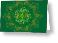 Mandala Journey Greeting Card