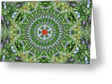 Mandala July 16 Greeting Card