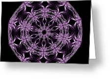 Mandala Purple And Black Greeting Card