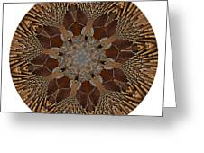 Mandala - Talisman 1384 Greeting Card
