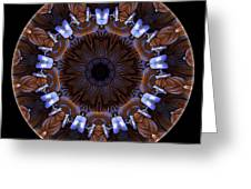Mandala - Talisman 1437 Greeting Card