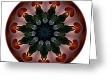 Mandala - Talisman 1440 Greeting Card