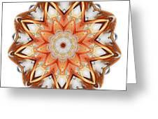 Mandala - Talisman 1620 Greeting Card