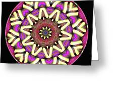 Mandala - Talisman 1682 Greeting Card