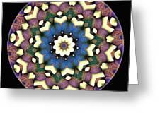 Mandala - Talisman 1684 Greeting Card