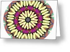 Mandala - Talisman 1685 Greeting Card