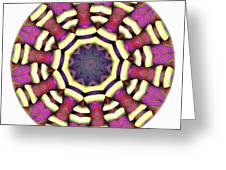 Mandala - Talisman 1687 Greeting Card