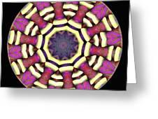 Mandala - Talisman 1688 Greeting Card