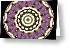 Mandala - Talisman 1690 Greeting Card