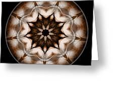 Mandala - Talisman 3702 Greeting Card
