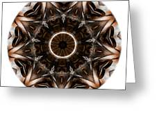 Mandala - Talisman 3705 Greeting Card