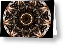 Mandala - Talisman 3706 Greeting Card