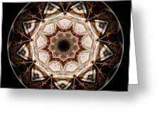 Mandala - Talisman 3708 Greeting Card