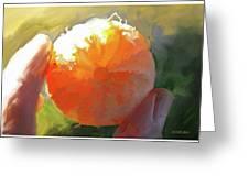 Mandarin Greeting Card